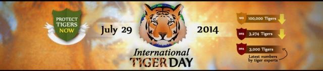 Tiger Day 2014